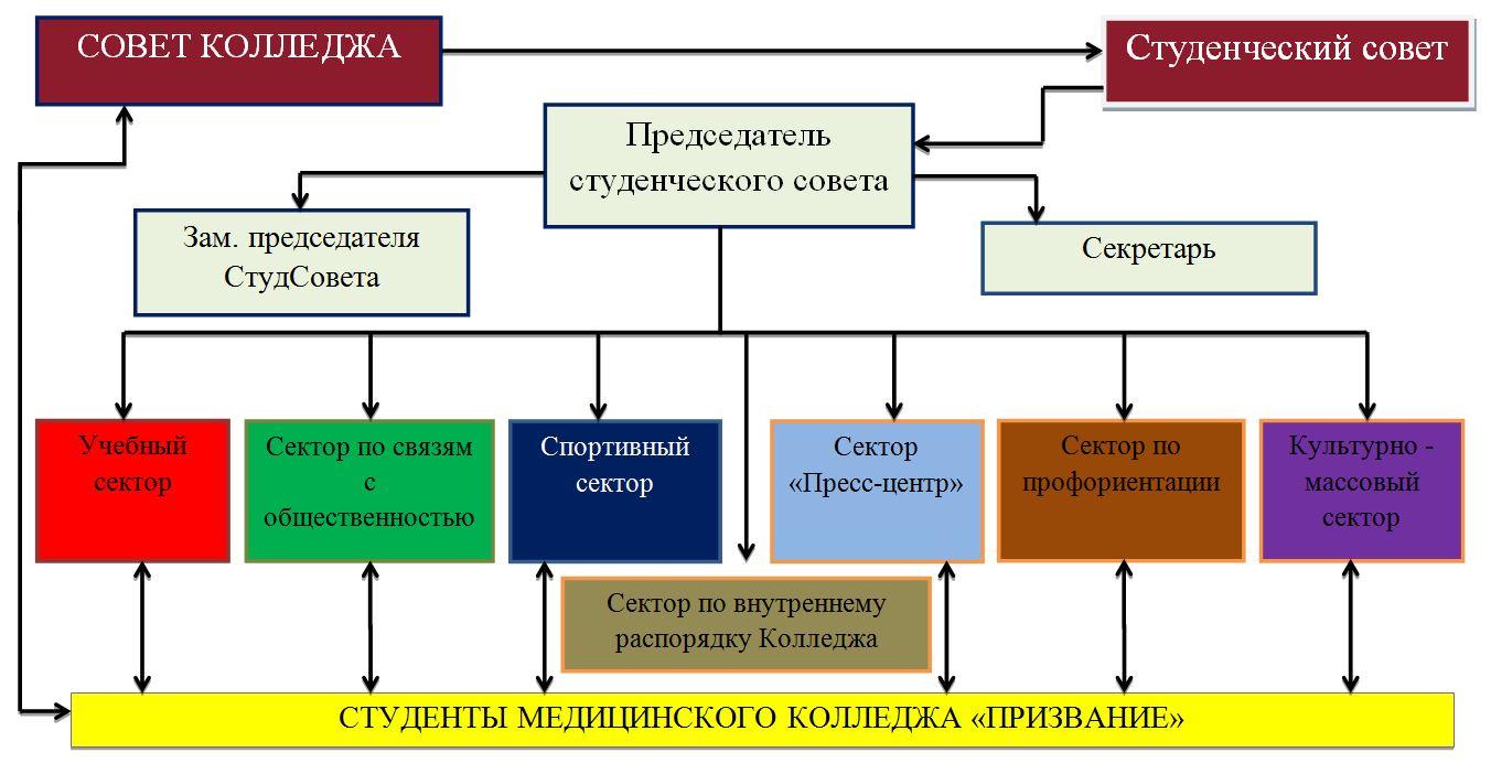 Структура Студенческого совета